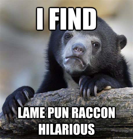 i find lame pun raccon hilarious - Confession Bear