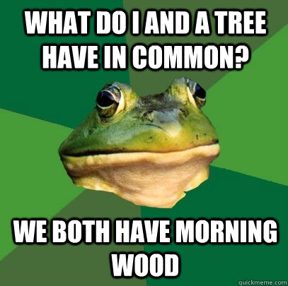 what do i and a tree have in common we both have morning wo - Foul Bachelor Frog