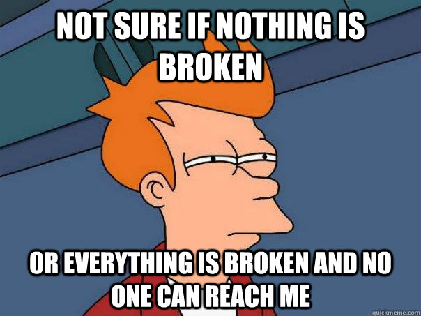 not sure if nothing is broken or everything is broken and no - Futurama Fry