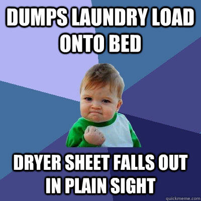 dumps laundry load onto bed dryer sheet falls out in plain s - Success Kid