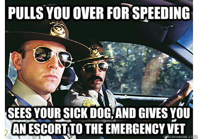 pulls you over for speeding sees your sick dog and gives yo - Good Guy Cop