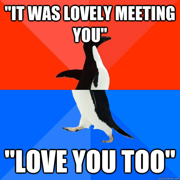 it was lovely meeting you love you too - Socially Awesome Awkward Penguin