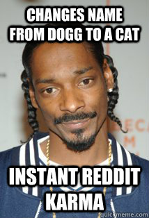 changes name from dogg to a cat instant reddit karma - 
