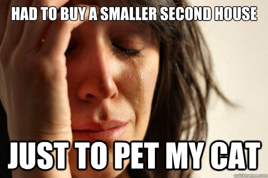 had to buy a smaller second house just to pet my cat - First World Problems