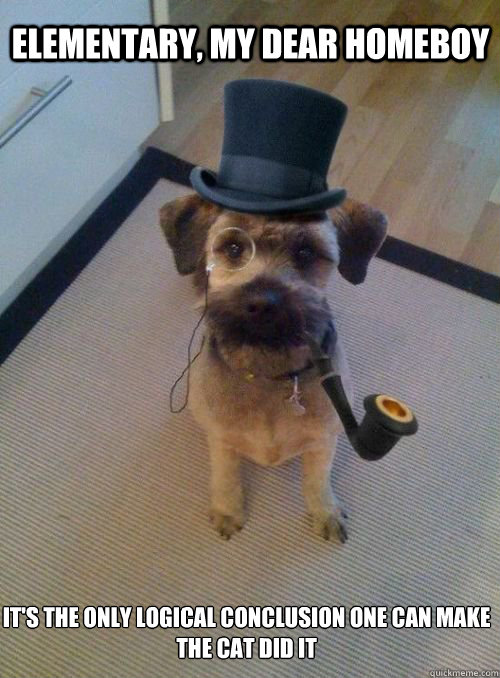 elementary my dear homeboy its the only logical conclusion - Gentleman Dog