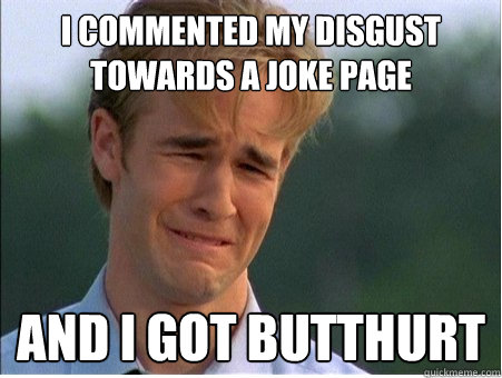 i commented my disgust towards a joke page and i got butthur - 1990s Problems
