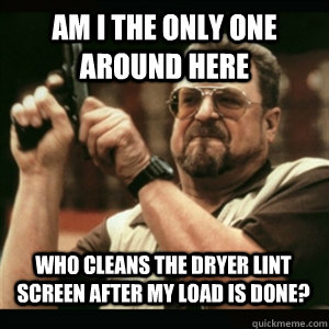 am i the only one around here who cleans the dryer lint scre - AM I THE ONLY ONE AROUND HERE