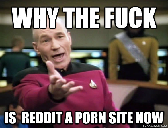 why the fuck is reddit a porn site now - Annoyed Picard HD