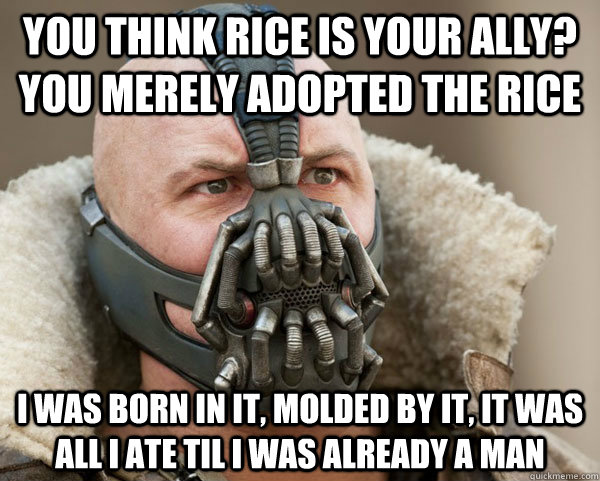 you think rice is your ally you merely adopted the rice i w - Bane Connery