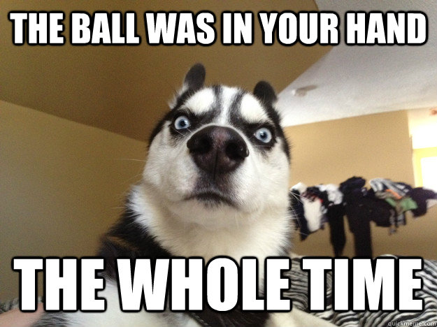 the ball was in your hand the whole time - Realization Dog