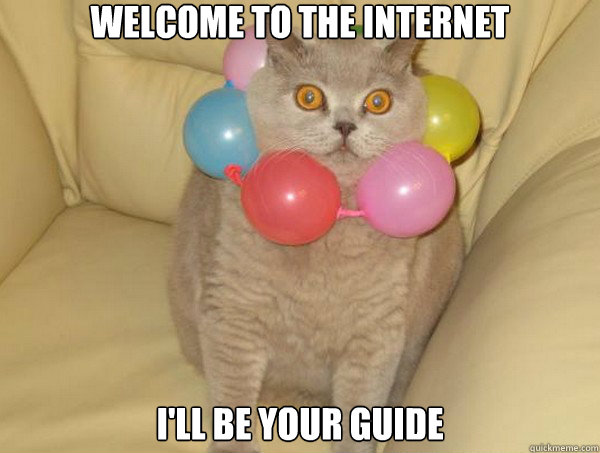 welcome to the internet ill be your guide -
