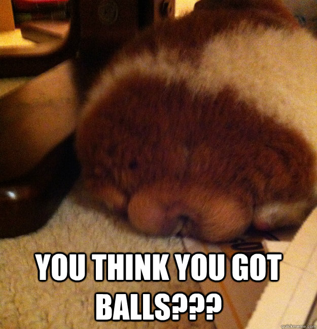 you think you got balls - BigBalls