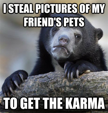 i steal pictures of my friends pets to get the karma - Confession Bear