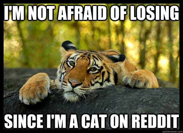 im not afraid of losing since im a cat on reddit -