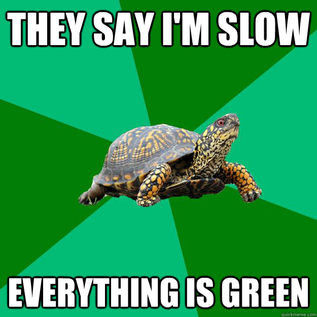 they say im slow everything is green - Torrenting Turtle