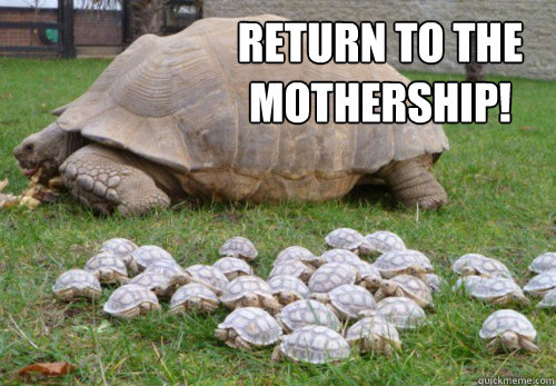 return to the mothership -