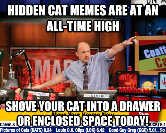 hidden cat memes are at an alltime high shove your cat into - Mad Karma with Jim Cramer