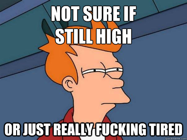 not sure if still high or just really fucking tired - Futurama Fry