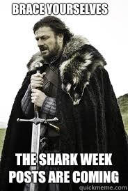 Brace Yourselves The shark week posts are coming - Brace Yourselves