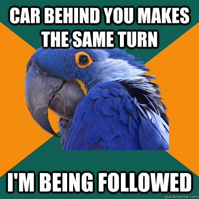 car behind you makes the same turn im being followed - Paranoid Parrot