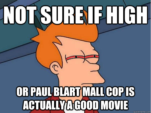 not sure if high or paul blart mall cop is actually a good m - High Fry