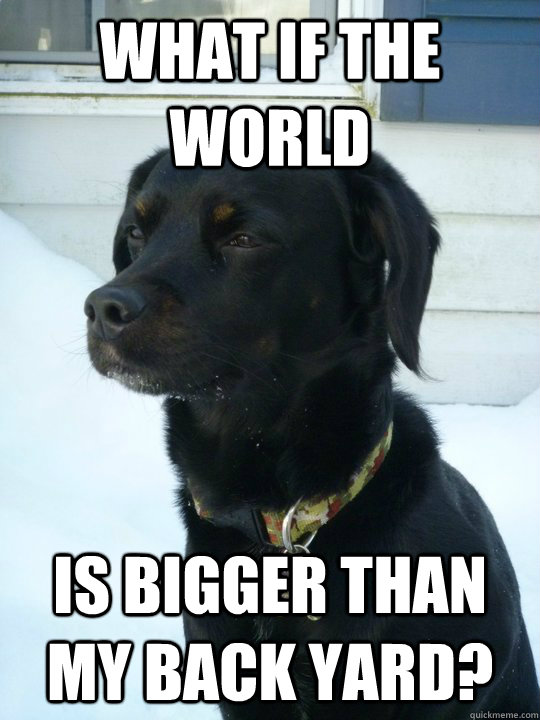 what if the world is bigger than my back yard - Philosophical Puppy