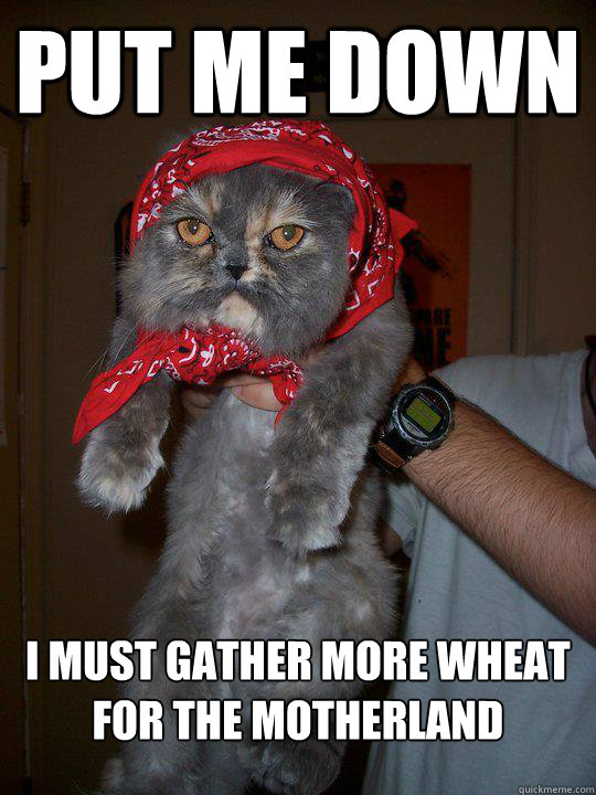 put me down i must gather more wheat for the motherland - Soviet Cat