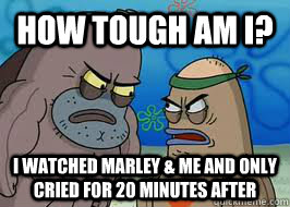 how tough am i i watched marley me and only cried for 20 - How tough am I