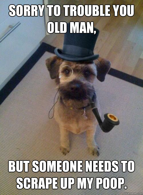 sorry to trouble you old man but someone needs to scrape u - Gentleman Dog