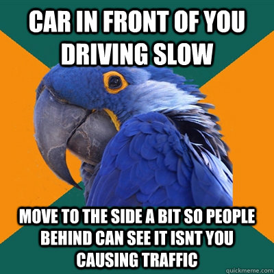 car in front of you driving slow move to the side a bit so p - Paranoid Parrot