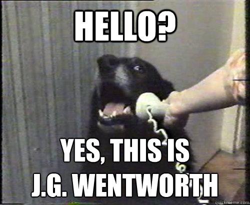 yes dog meme - photo #17