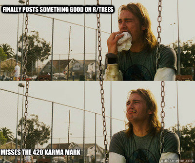 finally posts something good on rtrees misses the 420 karma - First World Stoner Problems
