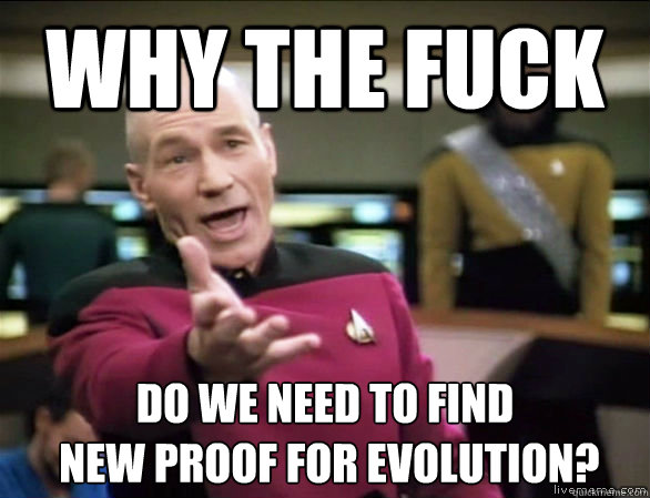 why the fuck do we need to find new proof for evolution - Annoyed Picard HD