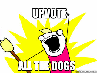 upvote all the dogs - All The Things