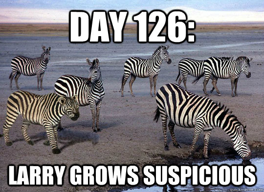 day 126 larry grows suspicious - Zebra Lion