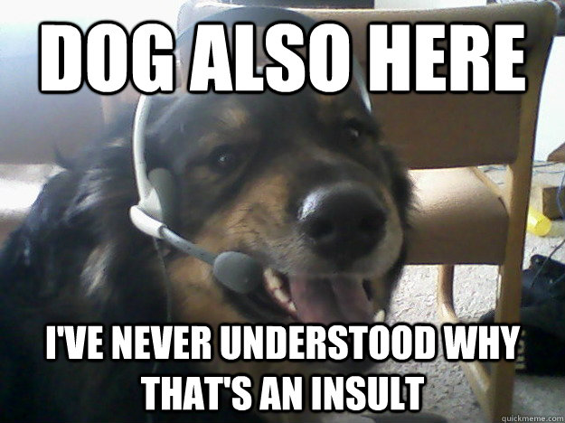 dog also here ive never understood why thats an insult  -