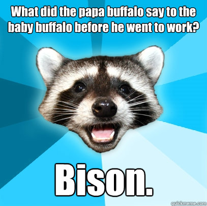 what did the papa buffalo say to the baby buffalo before he  - Lame Pun Coon