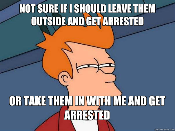 not sure if i should leave them outside and get arrested or  - Futurama Fry