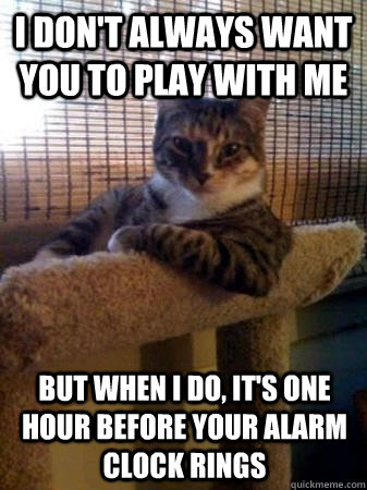 i dont always want you to play with me but when i do its  - The Most Interesting Cat in the World