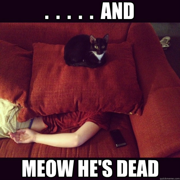 and meow hes dead - jealous cat