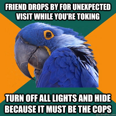 friend drops by for unexpected visit while youre toking tur - Paranoid Parrot