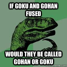 if goku and gohan fused would they be called gohan or goku - Bo Philosorapter