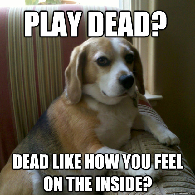 play dead dead like how you feel on the inside - judgmental dog