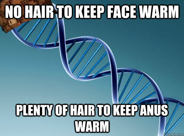no hair to keep face warm plenty of hair to keep anus warm - Scumbag Genetics