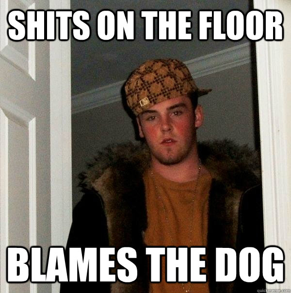 shits on the floor blames the dog - Scumbag Steve