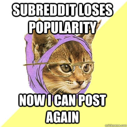 subreddit loses popularity now i can post again - Hipster Kitty