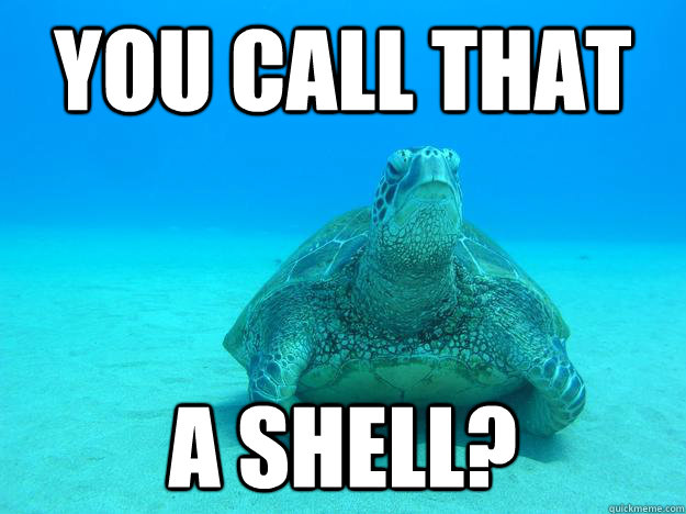 you call that a shell -