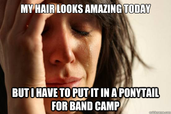 my hair looks amazing today but i have to put it in a ponyta - First World Problems