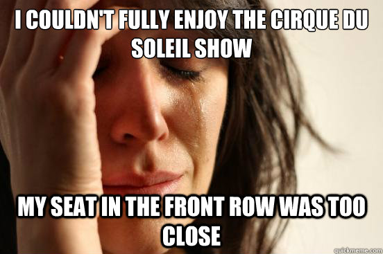 i couldnt fully enjoy the cirque du soleil show my seat in  - First World Problems