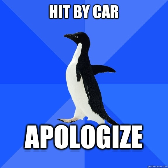 Hit by car apologize - Socially Awkward Penguin